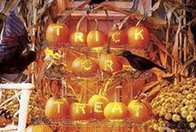 Outdoor Halloween Decorations / by Nora Squires