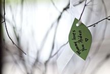 nature themed baby shower / by Kristi White