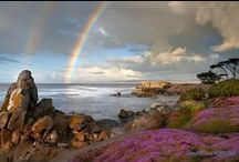 """{ Monterey Peninsula } / """"Home""""~Images, traditions, people & events of the Monterey Peninsula and surrounding area  ( past + present )       *  Monterey  *  Pacific Grove  *   Pebble Beach  *   Carmel  *  Carmel Valley  *  Point Lobos  * Big Sur  *"""