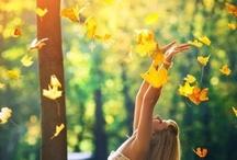 Autumn / by Kaitlyn
