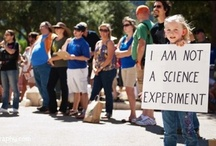 our food, gmos, toxins... / by Jessica Gill