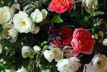 Florals | KB Faves