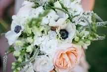 Bridal Bouquets / by Kristin Banta Events