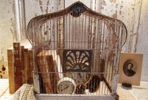 Birdcage Bliss / by Connie Robinson