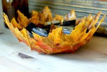 Seasons! Fall / by Angela Halfacre