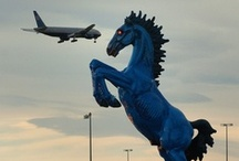 Denver Internation Airport and the Blue Mustang