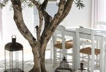 Mediterranean life. Summer house.