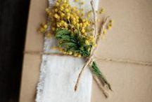 packaging / by Bambi Elizabeth