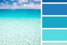 Color palettes / Color palettes examples