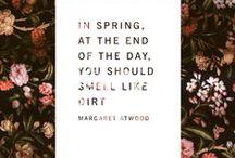 springtime / Happy Spring!