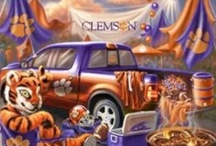 CLEMSON / Our blood is ORANGE at our house! / by JGW
