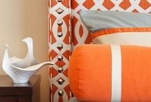 Orange goodness / by Linda Gildersleeve Caudell