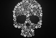Skulls...the center of knowledge and understanding.  / Skulls....the center ok knowledge and understanding. / by Stephanie Harman