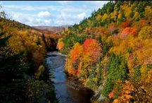 Nova Scotia Fall Packages / There's no better time to explore Nova Scotia than in the fall. Golf in the fresh autumn air, enjoy a delicious fall harvest meal, or simply enjoy the beauty of the Cabot Trail lit up in fiery reds and yellows. With our 26 fall-themed packages, you can enjoy a weekend getaway this fall.  / by Nova Scotia Tourism