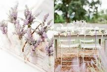 Tablescapes / by Mamie+James