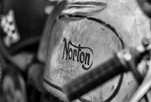 NORTON / by Javier Solans