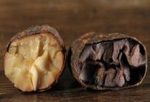 Cacao and Chocolate Origins / Where do the cacao beans grow that make the nibs, chocolate, and cocoa that we so enjoy?