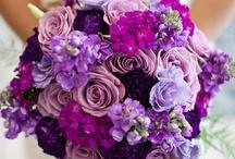 Weddings I Adore / by Natasha Sweeting