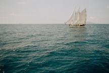Boats / by Diane McCarty Potts