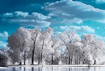 Photography: Infrared