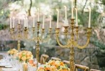 Wedding Planner / For all the weddings I am planning for other people.... / by Megan Street