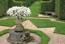 garden / by Donna Brightman
