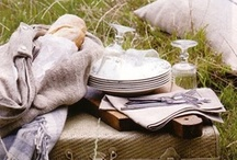 picnic / by Donna Brightman