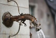 garden water / by Donna Brightman