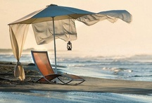beached / by Donna Brightman