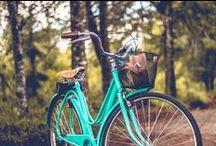 Bicicleta / Bicis loves  / by Tudo Orna