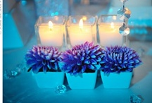 Landscape & Garden / Celebrating the Beauty of Glow in the Great Outdoors
