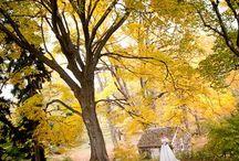 M&M Fall Wedding Ideas