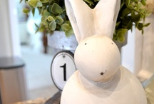 Bunnies Springing Up All Over