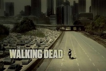 so,  guy rides into atlanta on a horse... / by Kelly George