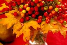 Thanksgiving Festivities / Food and decorating ideas for your Thanksgiving gatherings
