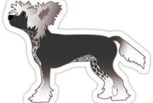 Chinese Crested Gifts by Breed Collection / Chinese Crested illustrations created by TriPodDog Design for the Breed Collection. Colorful, fresh dog breed silhouettes.