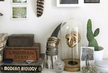 antique booth ideas / someday i will have an actual antique booth. i swear. / by Tarah Sutton