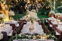 wedding/party/event / by Beth Torrens