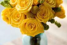 Turquoise and Yellow Wedding / Turquoise and Yellow wedding inspiration