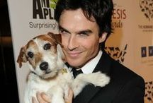 Celebrity Dog Lovers / by WaggingDog Rescue
