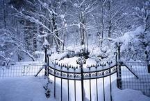 Winter / by Susan Serr