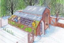 Green House Plans and Ideas / One day I'll have my perfect greenhouse