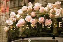 beautiful bouquets / by Danielle-Marie