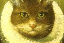 My Theo kitty