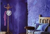 Paars   Purple