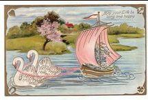 Swans.... I love em....