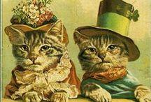 Cute cats...