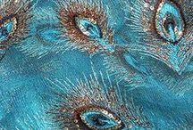 Pretty As A Peacock / All things #peacock