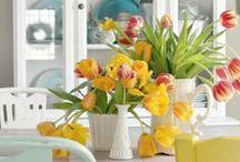 Kitchen / Kitchen decorating ideas and inspiration / by Deborah Hunter