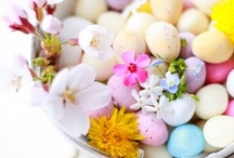 Easter Time / by Richmond Cookshop